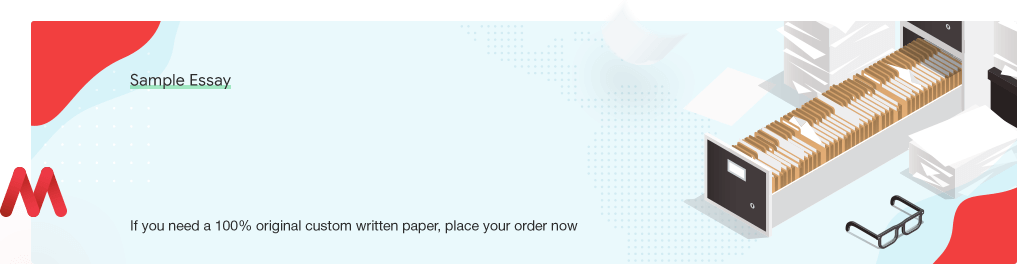 Custom «The Economic Condition of America» Sample Essay